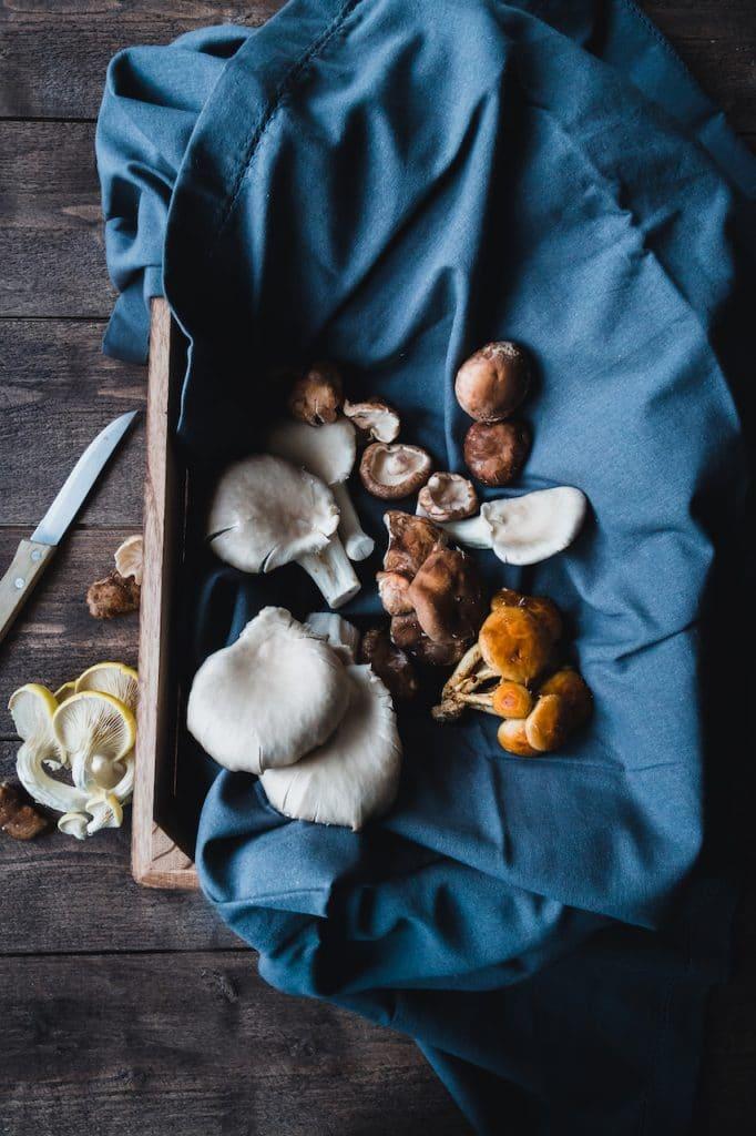 champignons-otera-produits bruts-stylisme culinaire